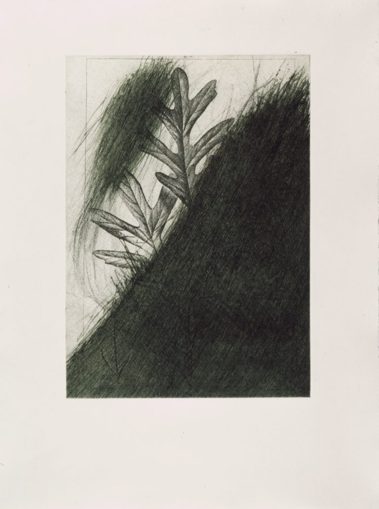 Arnulf Rainer, Edition, Grafik, Radierung