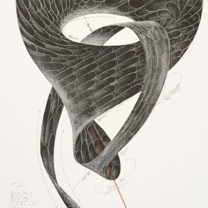 Jorinde Voigt, Graphic, Edition