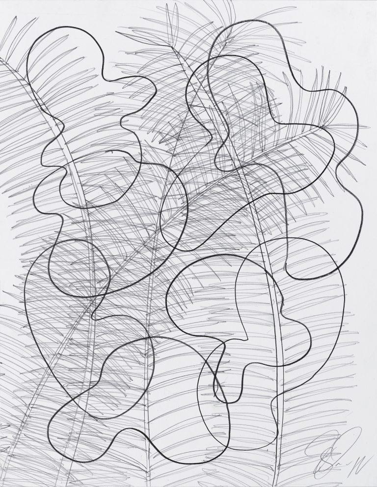 Tony Cragg, drawing, 2019